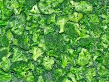 The Broccoli. Frozen mini-cabbages in a refrigerator-case royalty free stock photos