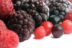 Frozen mixed berries Stock Photography