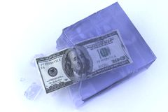 Frozen money. With the ice break's on white background Stock Photos