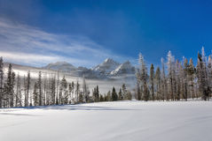 Frozen mountain lake covered with snow Royalty Free Stock Photography