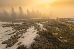 Frozen mountain meadow in late winter. Poland Stock Photo