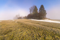 Frozen mountain meadow in late winter. Poland Stock Image