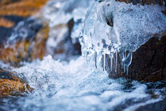 Frozen mountain river Stock Images
