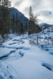 Frozen mountain river in the Tatra Mountains Stock Photos