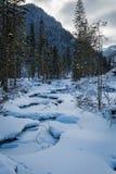 Frozen mountain river in winter, Tatra Mountai Royalty Free Stock Image