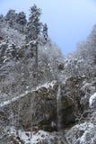 Frozen mountain stream Stock Image