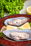Frozen mussels. Royalty Free Stock Photography
