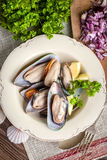 Frozen mussels. Royalty Free Stock Photos