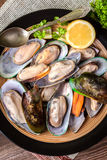 Frozen mussels. Royalty Free Stock Images