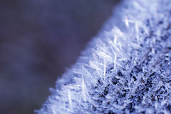 Frozen Nature Royalty Free Stock Photography