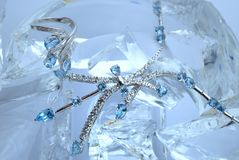 Frozen necklace Stock Photography