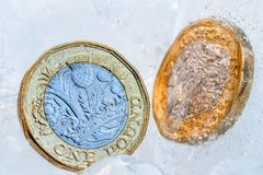 Frozen New British one pound sterling coin up close macro inside ice cubes.  Stock Photography