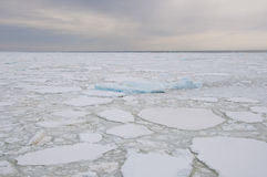 Frozen ocean in Antarctic Stock Photos