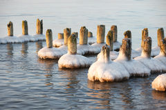 Frozen old pier piles Royalty Free Stock Photo