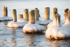 Frozen old pier piles Royalty Free Stock Image