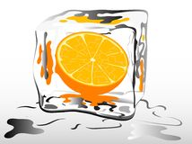 Frozen orange Stock Photo