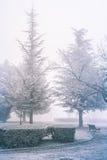 Frozen park Royalty Free Stock Photo