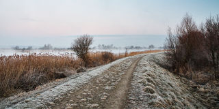 Frozen path in winter. Frozen path on the river in winter morning Royalty Free Stock Images