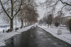 Frozen pathway in the park by the river on a winter day Royalty Free Stock Photo