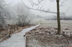 Frozen pathway Royalty Free Stock Photo