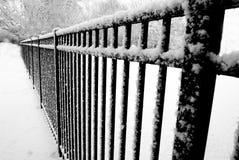 Frozen patterns Stock Images