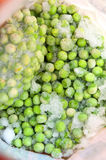 Frozen peas bag Royalty Free Stock Images