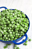 Frozen Peas in Blue Colander Royalty Free Stock Photo