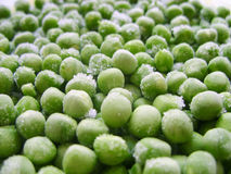 Frozen peas. Peas green color food agriculture fresh texture photo stock Stock Images