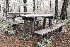 Frozen picnic table Royalty Free Stock Photos