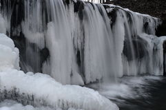 Frozen in place and time. Beauty stuck in time royalty free stock photos