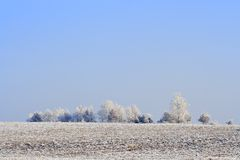 Frozen plowed fields and trees Stock Image