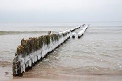 Frozen poles of breakwaters on the sea coast. Icy wooden poles. Season winter stock photography