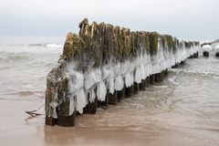 Frozen poles of breakwaters on the sea coast. Icy wooden poles. Season winter stock photos