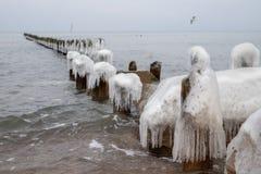 Frozen poles of breakwaters on the sea coast. Icy wooden poles. Season winter stock image