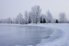Frozen Pond Royalty Free Stock Photography