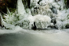 Frozen pond. A still life with a pond in the forest frozen over Royalty Free Stock Images