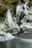 Frozen pond in forest. A frozen pond in the forest with icicles and frost Royalty Free Stock Images