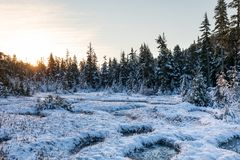 Frozen pond in the mountains in the morning sunlight royalty free stock photo