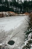 Frozen pond in winter park. Frozen pond with traces of snow in winter forest Royalty Free Stock Photos