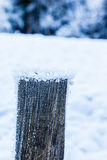 Frozen post Stock Photos