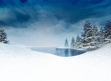 Frozen pound with trees and cloudy sky Royalty Free Stock Photos