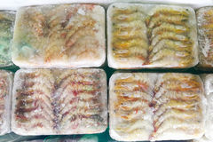 Frozen prawns shrimps in ice bag to preserve freshness. In supermarkets Royalty Free Stock Photo