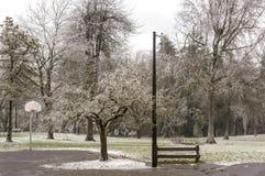 Frozen public park Gresham Oregon. Royalty Free Stock Photos