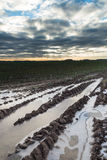 Frozen puddle on agricultural field. Stock Photo