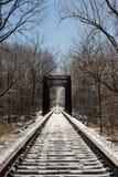Frozen Railroad Tracks and Trestle Bridge Stock Photo