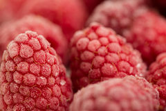 Frozen raspberries Stock Photos