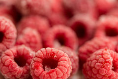Frozen raspberries Royalty Free Stock Images