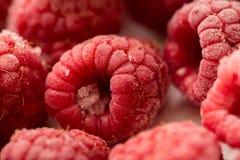 Frozen raspberries Stock Images