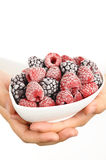 Frozen raspberries and blackberries Stock Photos