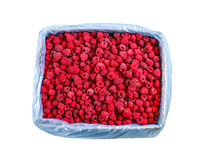 Frozen raspberries in crates - texture - background Royalty Free Stock Images